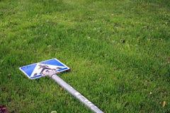 Zebrastreifen der Rasen Lizenzfreie Stockbilder