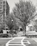 Zebrastreifen entlang einer Stadt-Straße Stockbilder