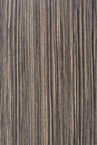 Zebrawood tekstura Zdjęcie Royalty Free