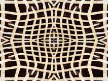 Zebry futerka wzór Obrazy Stock