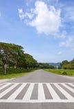 Zebry ruch drogowy spaceru sposób, przecinający sposób zdjęcie royalty free