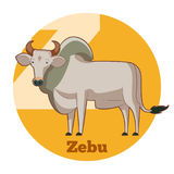 Zebu κινούμενων σχεδίων ABC Απεικόνιση αποθεμάτων