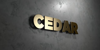 Zeder - Goldzeichen angebracht an der glatten Marmorwand - 3D übertrug freie Illustration der Abgabe auf Lager lizenzfreie abbildung