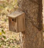 ZederBirdhouse im Holz lizenzfreie stockfotografie
