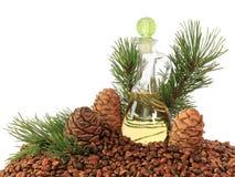 Zedernkegel, Nüsse und Zedernnussöl lokalisiert auf weißem Hintergrund Lizenzfreies Stockfoto