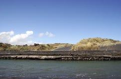 Zeedijk Stock Foto's