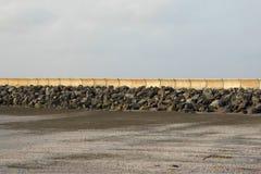 Zeedijk en pijler langs strand Stock Afbeeldingen