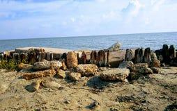 Zeedijkbarrière royalty-vrije stock afbeelding