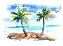 Zeegezicht met een palm Stock Afbeeldingen