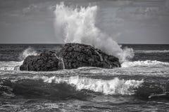 Zeegezicht, oceaankust die, golven in kleine winden op kustrotsen, zwart-wit kader breken royalty-vrije stock foto's