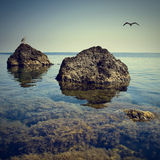 Zeegezicht 1 van de Krim Stock Afbeeldingen