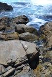 Zeegezicht van het westkust het Nationale Park royalty-vrije stock foto's