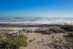 Zeegezicht van strand met shells en golven stock fotografie