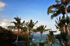 Zeegezicht van tropische baai met palmenlandschap royalty-vrije stock afbeelding