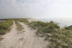 Zeegezicht, wild strand, oceaangolven Royalty-vrije Stock Foto