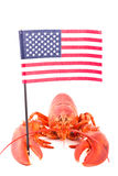 Zeekreeft met Amerikaanse vlag Stock Foto
