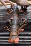 Zeekreeft op de grill Stock Fotografie