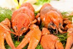 Zeekreeften met salade royalty-vrije stock afbeeldingen