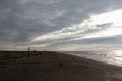 Zeekust Stock Fotografie