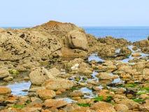 Zeekust en mening van de golf royalty-vrije stock foto's
