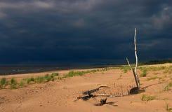 Zeekust, zandig strand Stock Foto's