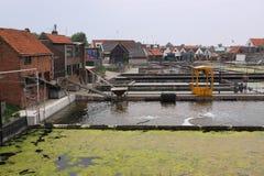 荷兰语荷兰省夏天zeeland 免版税库存图片