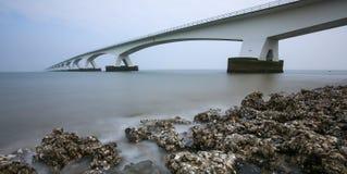 Zeelandbrug - ponte lungo di 5Km - i Paesi Bassi Fotografie Stock Libere da Diritti