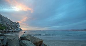 Zeemeeuw bij Zonsondergang bij Morro-Rots op de centrale kust van Californië bij Morro-Baai Californië de V.S. stock afbeelding