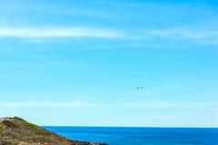 Zeemeeuw die over het overzees op een zonnige dag vliegen royalty-vrije stock afbeelding