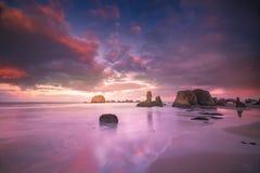 Zeemeeuw die zich op strand met seastacks en kleurrijke wolken bevinden Royalty-vrije Stock Fotografie
