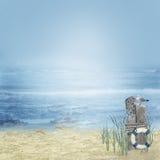 zeemeeuw en zeester op het strand stock illustratie