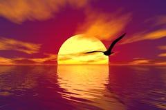 Zeemeeuw en zonsondergang Royalty-vrije Stock Foto