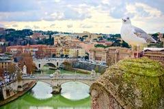 Zeemeeuw op een pijler wordt neergestreken die een stad overzien die royalty-vrije stock fotografie