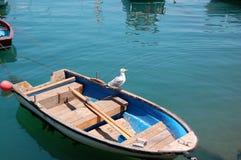 Zeemeeuw op een roeiboot Stock Fotografie