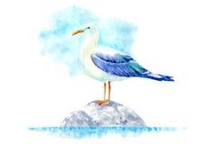 Zeemeeuw op een steen royalty-vrije illustratie