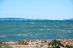 Zeemeeuw in Palma Bay. stock foto