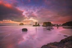 Zeemeeuw, seastacks en kleurrijke wolken Royalty-vrije Stock Fotografie