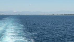 Zeemeeuwen die boven het overzees vliegen - Voorraadvideo stock videobeelden