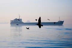 Zeemeeuwen en een schip stock fotografie