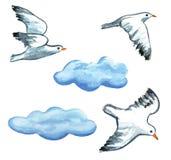 Zeemeeuwen en wolken de kunstillustratie van de waterverfhand geschilderde klem Stock Foto