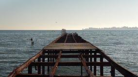 Zeemeeuwen op de pijler stock footage