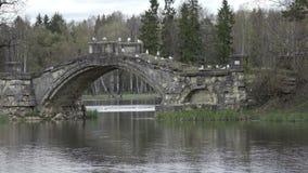 Zeemeeuwen op oude die steen aan de brug op het meer, het park van Gatchina wordt vernietigd Rusland stock video