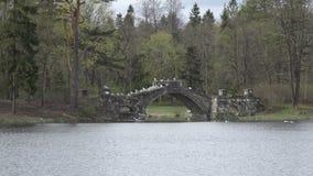 Zeemeeuwen op oude steen die aan de brug op het meer, het park van Gatchina wordt vernietigd Rusland stock videobeelden