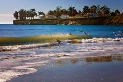 Zeemeeuwen tijdens de vlucht bij het Strand Stock Foto