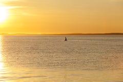 Zeemeeuwsilhouet boven het overzees bij kleurrijke zonsondergang Idee van harmonie en kalmte royalty-vrije stock fotografie