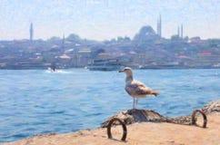 Zeemeeuwzitting op de dijk dichtbij Galata-Brug, Istanboel Royalty-vrije Stock Foto