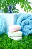 Zeep en handdoek. Stock Afbeeldingen