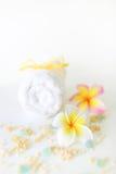 Zeep, handdoek en bloemensneeuwklokjes royalty-vrije stock foto