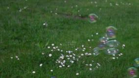 zeepbels op groen gazon stock videobeelden