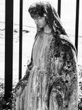 Zeer Bemoste Mary Royalty-vrije Stock Foto's